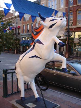 Cow 08