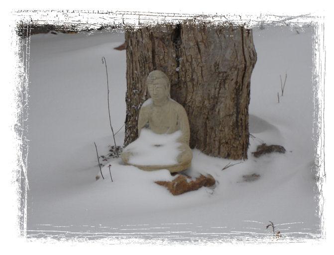 Winter Buddha