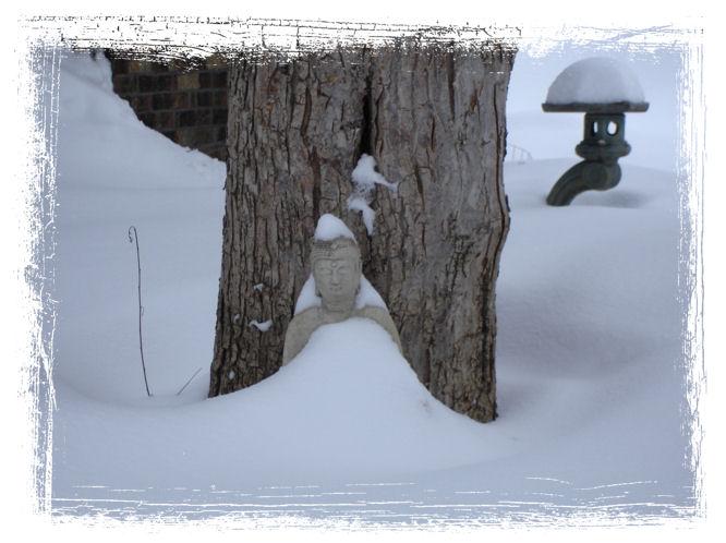 Winter Buddha IV