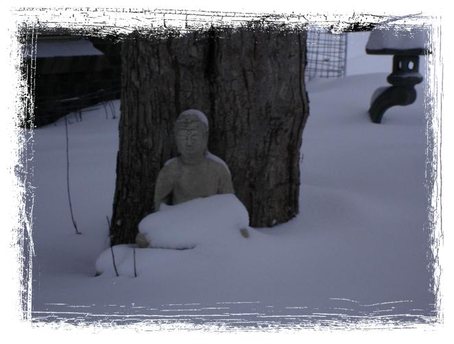 Winter Buddha V
